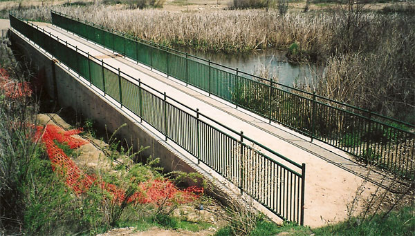 Maple Grove Wetland Dam